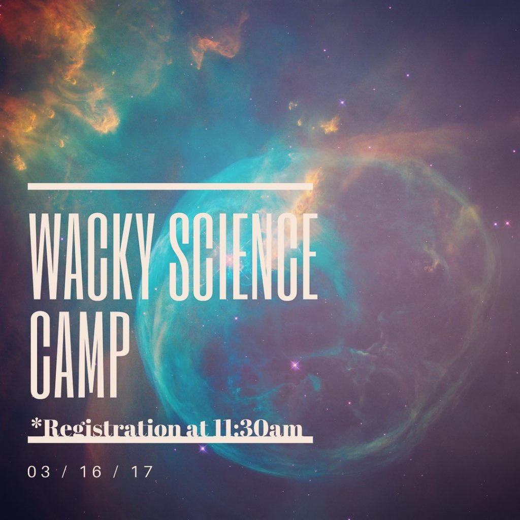 wacky science camp thursday